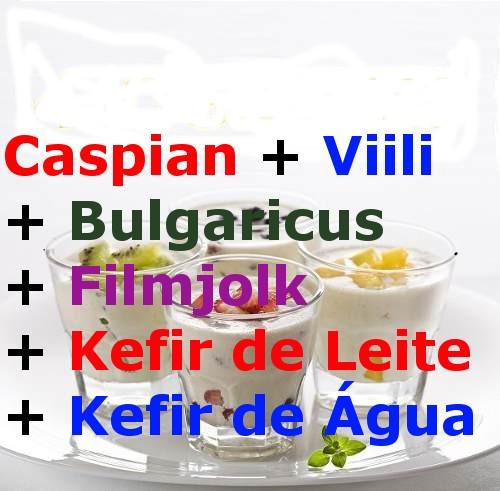 Comprar Caspian Viili Bulgaricus Filmjolk Kefir de Leite e Kefir de Agua Juntos