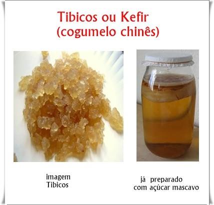 Tibicos Kefir de Agua ou Cogumelo Chinês