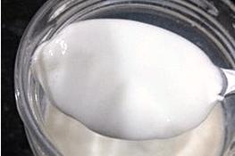 Bulgaricus Yogurt Iogurte