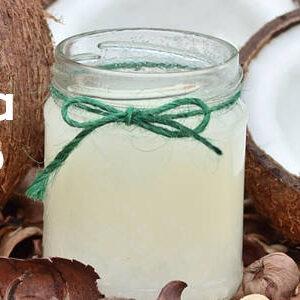 Kefir de Água de Coco