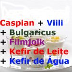 Kefir de Leite + Kefir de Água + Caspian + Viili + Bulgaricus + Filmjolk